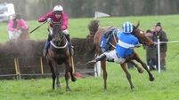 'Ride of the season': Waterford jockey produces miraculous recovery to win race