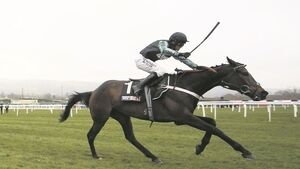 The curious case of Altior