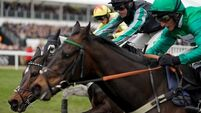 World-beater Altior jumps into record books