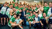 'I've no doubt Limerick will win more All-Irelands but it's doubtful it'll be in 2019'