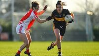 Mourneabbey through to Senior Club final clash with Foxrock-Cabinteely
