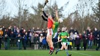 'Twelve months ago, we couldn't see this coming in a fit', says Charleville's Tony McAuliffe