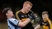 No drama in this trip to Tipp for Dr Crokes