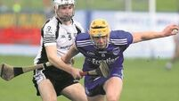 Tipperary SHC: Nenagh book semi-final showdown with champions