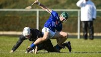 Hurling silverware for Wicklow, Roscommon and Longford