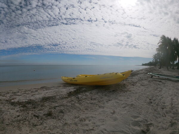 A kayak around Key Biscayne offers a different perspective of Miami (Ryan Hooper/PA