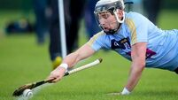 UCD grab a draw against NUIG in entertaining Fitzgibbon Cup encounter