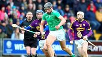 Gearóid Hegarty: 'People were crying out for Division 1A hurling in Limerick'