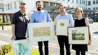 Made in Munster: Art helps to soothe Limerick hospital stress