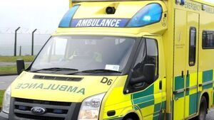 Man dies after being injured by animal on Longford farm