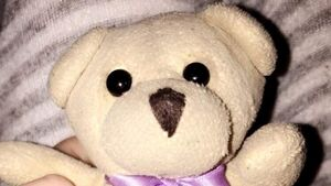 Couple in emotional appeal for return of very special teddy bear