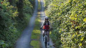 NTA doubled spending on walking and cycling infrastructure in last year to €21.6m