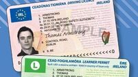 11,000 UK driving licences exchanged for Irish ones since January