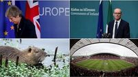 Friday's Evening Round-Up: EU summit, Good Friday Agreement and mistaken identity of rodent