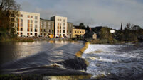 One million fish in Cork river that 'dried out' in seconds