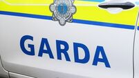 Investigation after suspected arson attack on garda cars in Co Louth