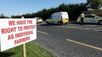 Action against protestors outside Co Wexford beef processing plant struck out