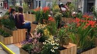 Parking space in Cork city transformed into 'People's Parklet'