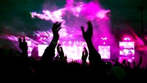 Gardaí adopt twin-track approach to tackle drugs risk at festivals