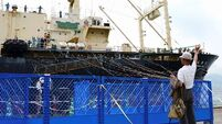 Japan resumes commercial whaling after three-decade break