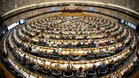Special Report: Irish MEPs claim €600k each