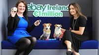 Around 50 SMEs see sales rise by more than €1m in four months in eBay pilot programme
