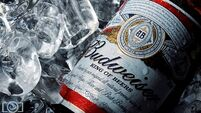 Why Budweiser pulled mega shares sales plan