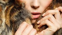 Fur farming: Support for ban