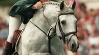 Irish eventers eye more silverware in Germany