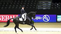 Reynolds lifts dressage team to Olympics