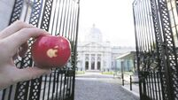 Government backs Apple: Appeal is not in long-term best interest