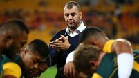 Michael Cheika: Schmidt has not been found out