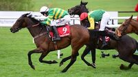 Unowhatimeanharry regains Punchestown Champion Stayers title