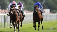 From Frankel to Enable: A tale of two superstars of the turf
