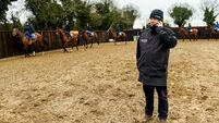Elliott planning ambitious double Grand National tilt with Tiger Roll