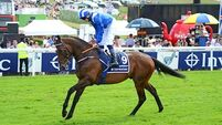 Kevin Prendergast: Madhmoon can shine at Irish Derby