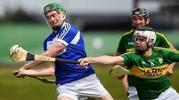 Experience against the big boys has stood to Laois