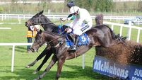 Voix Du Reve primed for Ryanair take-off