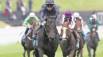 Could Madhmoon spoil Ballydoyle's Derby party?