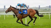 You just have to stand back and admire Un De Sceaux