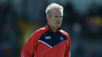Kieran Kingston 'would be the best appointment' for Cork says U20 boss Ring