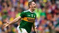 Stephen O'Brien cleared to face Dublin