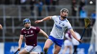 14-man Waterford set up league final clash with Limerick after two-point win