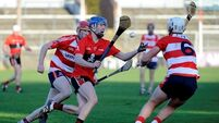 Class shines through as UCC overpower Cork IT