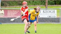 Champions Cork impress while Kilkenny and Limerick also open camogie championship campaign with wins