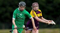 Formguide holds as Tipperary, Kilkenny and Limerick secure victories