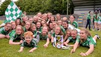 Limerick crowned All-Ireland U14 Silver champions with victory over Tipperary