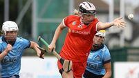 Camogie wrap: Cool Cork make it three wins from three