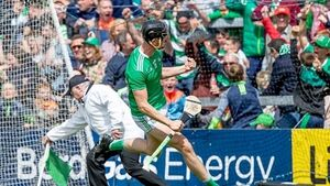 Limerick move swiftly and seamlessly through the gears