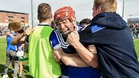 'This is probably the best day in Laois hurling history'